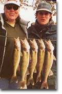 Walleye Fishing Leech Lake